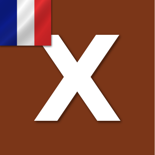 Word Expert – French 3.3 (Mod)
