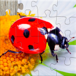 Insect Jigsaw Puzzles Game – For Kids & Adults 🐞 25.2 (Mod)