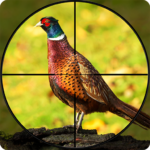 Pheasant Shooter: Crossbow Birds Hunting FPS Games 1.1 (Mod)