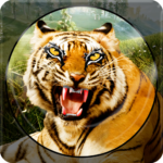Forest Animal Hunting 2018 – 3D  (Mod) 1.2.4