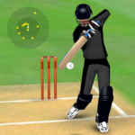Smashing Cricket – a cricket game like none other  (Mod) 3.0.1