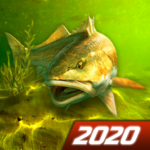 My Fishing World – Realistic fishing  (Mod)