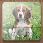 Dog Puzzle Games Free  (Mod)