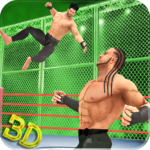 Tag Team Wrestling Superstars Fight: Hell In Cell  (Mod)